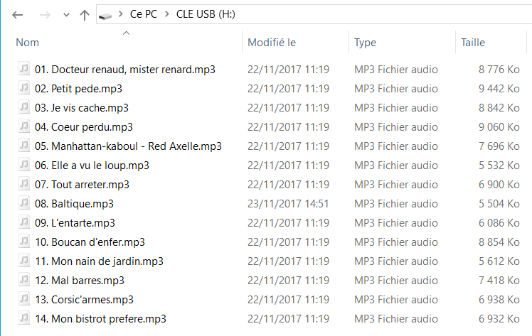 Capture d'écran de l'application explorateur Windows, fichiers en vrac sur clé USB.