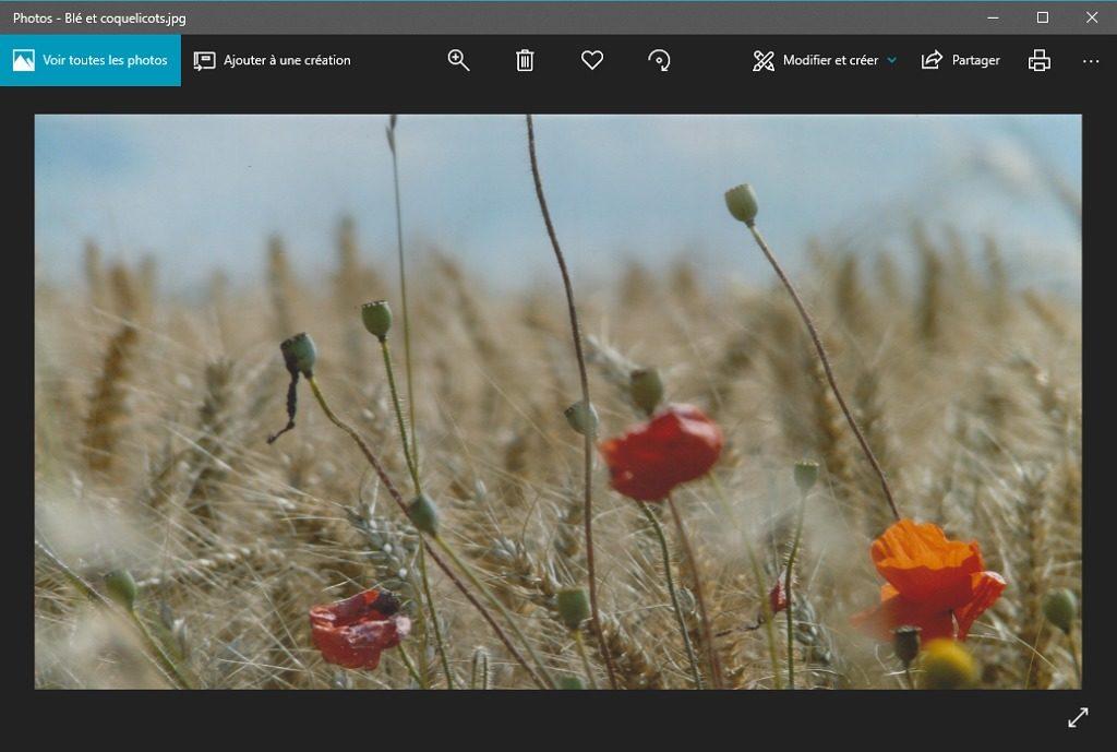 """Capture d'écran de l'application """"Photos"""" avec fichier final ICE ouvert."""