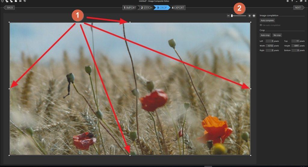 Capture d'écran de l'application ICE, onglet CROP
