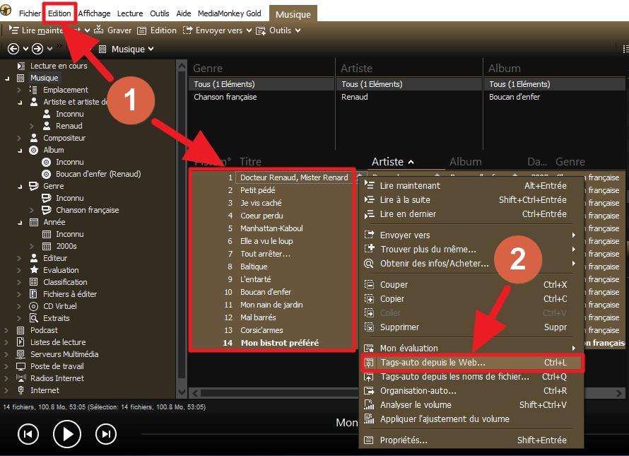 Capture d'écran de l'application MediaMonkey, sélection des pistes pour tags-auto depuis le web.