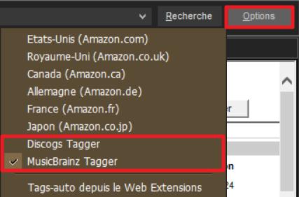 """Capture d'écran de l'application MediaMonkey, options de recherche de la fonction """"Tags-auto depuis le Web""""."""